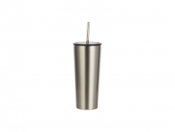 22oz/650ml Stainless Steel Tumbler w/ Straw (Silver)